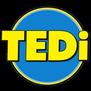 TEDi logo | Zagreb Buzin | Supernova